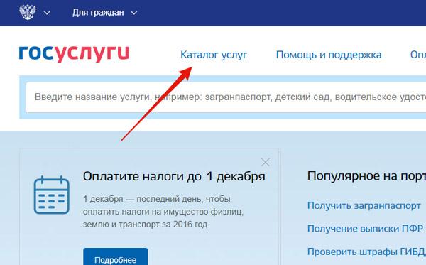 Выбор раздела «Каталог услуг» на портале «Госуслуги»